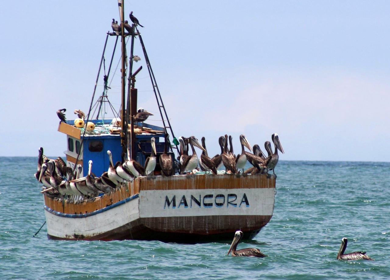 A fishing boat at Mancora