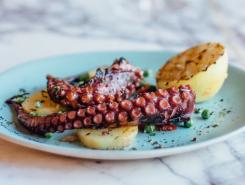 Plated dish of octopus